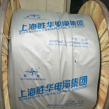 上海胜华电缆集团 塑料电力电缆 中国驰名品牌