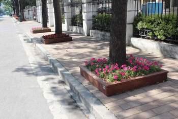 众洲 景观园林木塑花箱 树池 道路隔离组合花箱 防腐木塑花盆